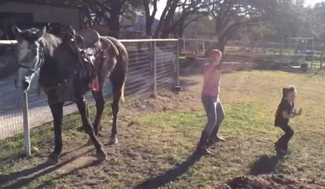 Сестры решили записать свой танец на видео, но в кадр попала лошадь. Я так еще никогда не смеялась!