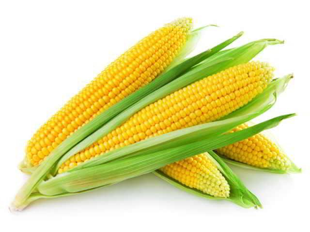 Маринование кукурузы в домашних условиях