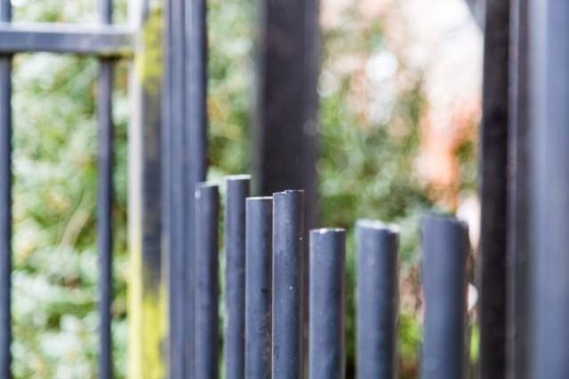 Ранним утром мужчина увидел рыжика, нанизанного на забор… Трудно поверить — но теперь малыш жив и почти здоров!