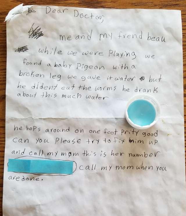 10-летняя девочка оставила врачу трогательную записку… Так она хотела помочь раненому голубю!