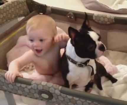 Видео: Ему: «Уйди!», а он... в ответ такое вытворяет! А у ребёнка сколько радости!
