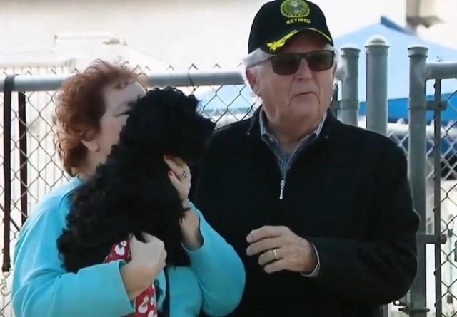 Счастливый билет: от пса отказались хозяева, но судьба привела его к женщине, которая давно о нем мечтала