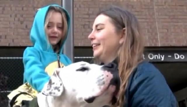 «Мы видим в тебе друга!»: собака была наживкой, а стала настоящим членом семьи