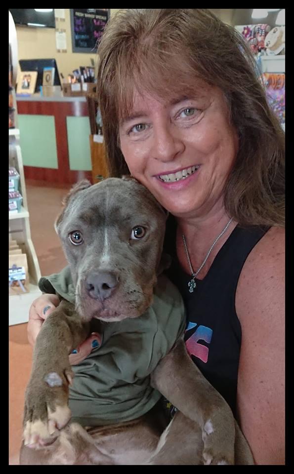 Мужчина со слезами на глазах спасает измождённого питбуля весом всего 11 килограммов – 12 недель спустя трансформация собаки тронула меня до слёз