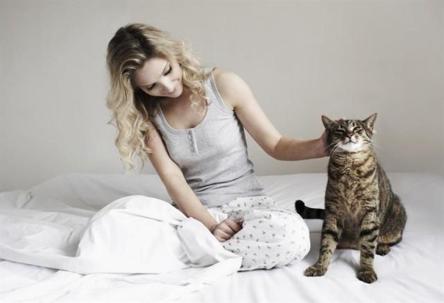 Целебные свойства кошек: примеры того, как лечат коты