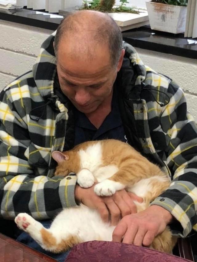 Кота отвергли за то, что «слишком ласковый», но сотни людей полюбили его именно за эту черту