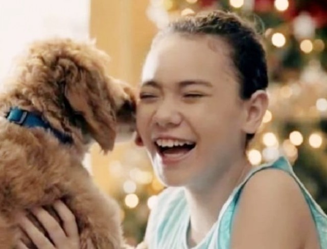 Найдя перед Рождеством бродячую собаку, мужчина никак не ожидал, что пес изменит его жизнь!