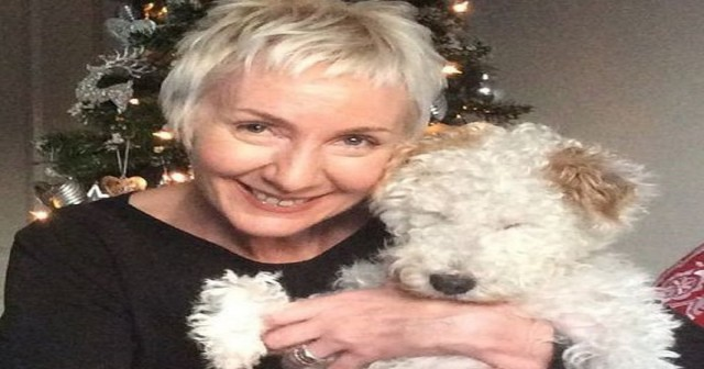 Слепую собаку выбросили в мусорник, но люди с золотым сердцем не оставили ее в беде! Первое Рождество - в семье!