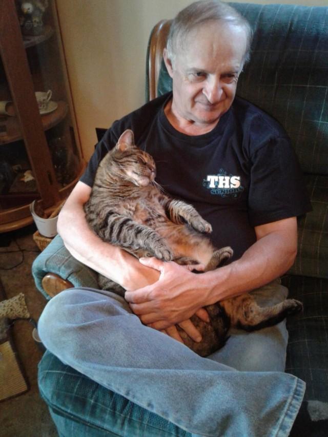 Кот приучил хозяина к получасовым объятиям перед работой – так продолжается почти 10 лет