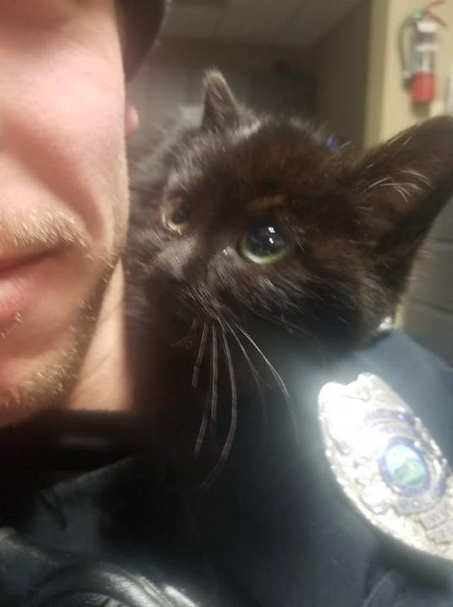 Молодой полицейский вышел взглянуть на лунное затмение, а в результате спас жизнь крохотному существу