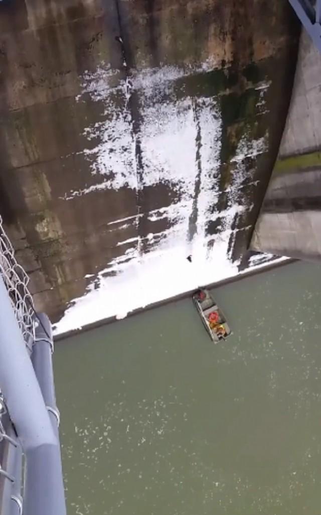 Кот в ужасе летел в воду, не зная, как поведут себя ждавшие его внизу люди. Видео!