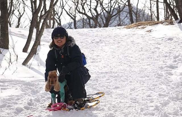 Видео: Этот смышлёный пёс настоящий профи в катании на скейтборде и самокате...