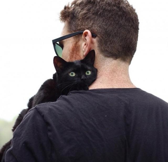 Котейка полгода прожил в приюте, а потом решил найти себе человека и запрыгнул к нему на колени