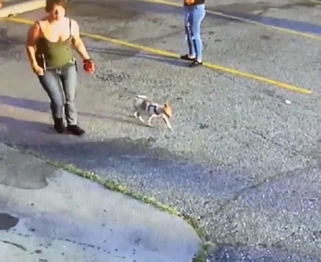 Гуляя с собакой, мужчина внезапно упал. Все побежали его спасать, а одна женщина почему-то пошла прямо к его питомцу