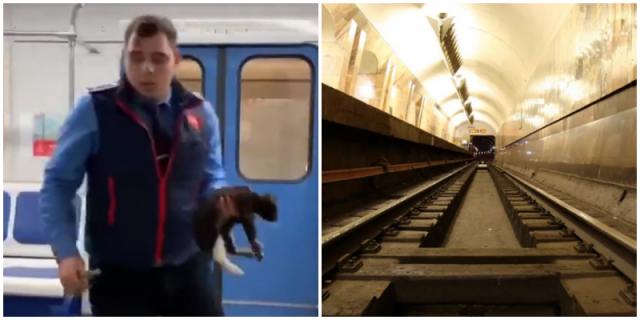 Видео: Машинист метро спас кошку по имени Снегурочка, которая оказалась на путях