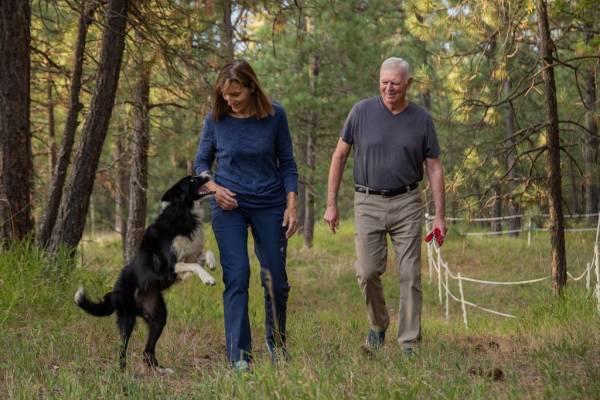 Женщина бросила работу, чтобы найти свою собаку. И спустя 57 дней судьба сделала ей подарок