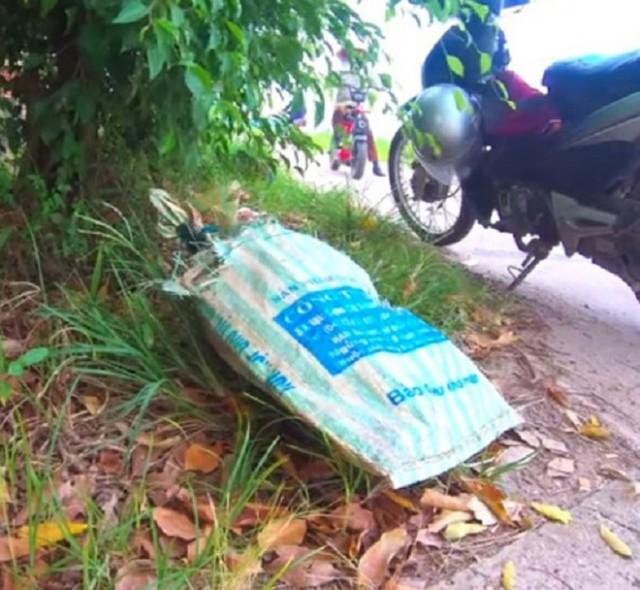 Мужчина заглянул в мешок, который он вытащил из мусорной кучи. Оттуда показалась обаятельная мордашка - Видео!