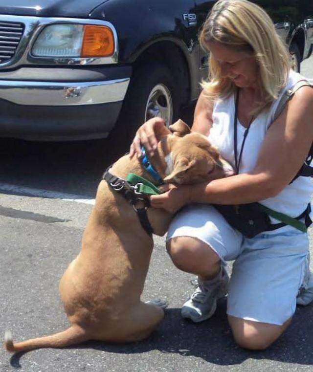 Преданная собака со своим щенком ждала хозяина в приюте, но он не вернулся за ними