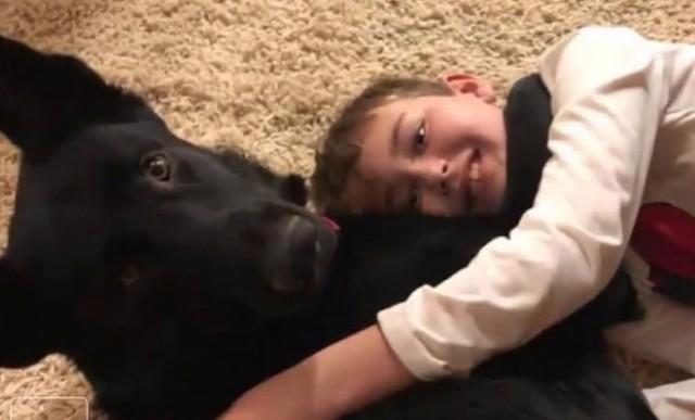 Узнав о больном мальчике, незнакомец проехал более 3700 км, чтобы помочь ребенку встретиться с питомцем