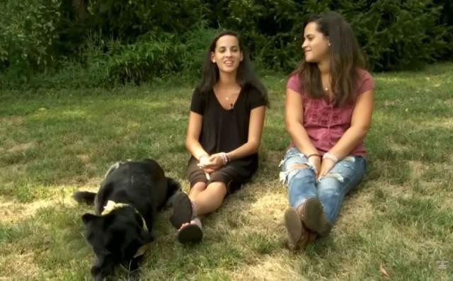 Оперируя собаку, ветеринары обнаружили вместо опухоли 8 трусов - Видео!